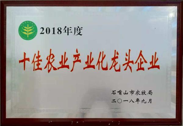 十佳龙头企业.jpg